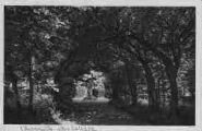 1 vue  - charmille du collège où Lamartine écrivit ses premiers vers (ouvre la visionneuse)
