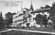 1 vue  - Château de Quinsonnas (ouvre la visionneuse)