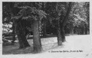 1 vue  - un coin du parc (ouvre la visionneuse)