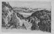 1 vue  - plaine de Gex - lac de Genève et Mont-Blanc (ouvre la visionneuse)