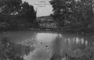 1 vue  - étang sous le château d'Angeville (ouvre la visionneuse)