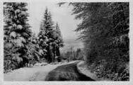 1 vue  - route de Tenay à Lompnes en hiver (ouvre la visionneuse)