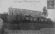 1 vue  - Les Ruines du Château de Ruffieu à Proulieu (ouvre la visionneuse)