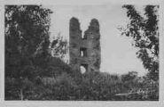 1 vue  - ruines du vieux château du Mas-Rillier (ouvre la visionneuse)