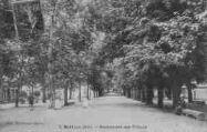 1 vue  - promenade des Tilleuls (ouvre la visionneuse)