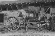 1 vue  - Concours d'utilisation d'un Taureau comme Bête de Trait-M. François Feuillant, à Montracol : 1er Prix du Syndicat Agricole de Bourg (ouvre la visionneuse)