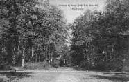 1 vue  - forêt de Seillon - rond-point (ouvre la visionneuse)