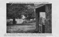 1 vue  - un coin de la place de la Halle - le tilleul séculaire (ouvre la visionneuse)