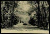 1 vue  - Allée du Château (ouvre la visionneuse)