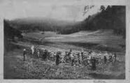 1 vue  - Colonie de vacances de Ruffieu - Dîner champêtre - le Benedicite (ouvre la visionneuse)