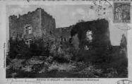 1 vue  - Ruines du château de Beauretour (ouvre la visionneuse)