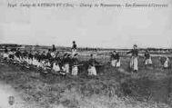 1 vue  - Champ de Manoeuvres - Les Zouaves à l'excercice (ouvre la visionneuse)