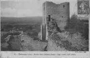 1 vue  - ruines d'un château féodal - tour ronde XIIe siècle (ouvre la visionneuse)