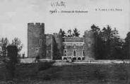1 vue Légende inscrite sur la carte postale : Château de Richemont5 Fi 449-11