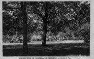 1 vue  - préventorium - un coin du parc (ouvre la visionneuse)
